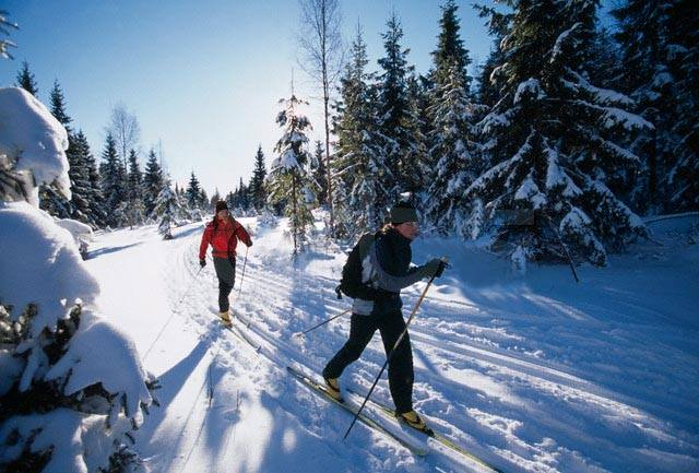 BIG NEWS!!  Beginning Nov. 1, High Mountain Outfitters will offer daily CROSS COUNTRY SKI RENTALS!  Only $20/day for a complete set-up from Fischer Skis.   Snowshoe rentals will be available as well!!